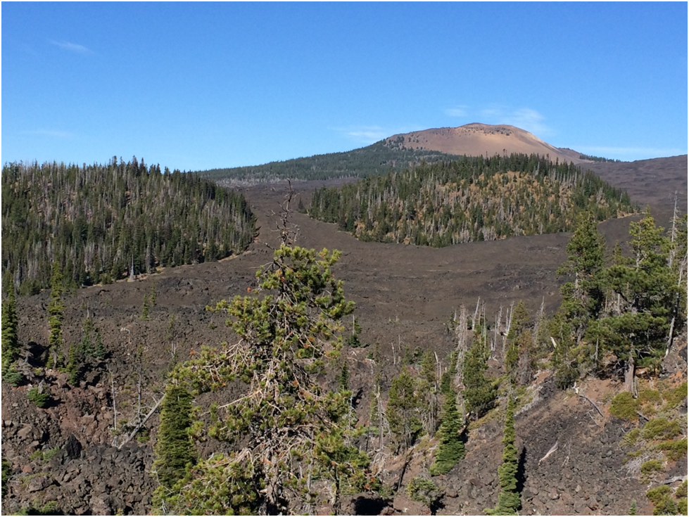 Lava fields between Eugene and Bend, OR